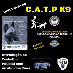 Protegido: Cães de Auxílio ao Trabalho Policial
